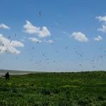 EcoFilms - making of Javakheti National Park Advertisement.